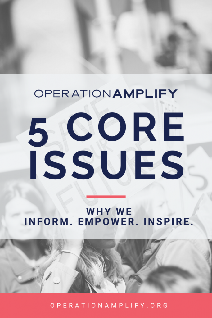 Operation Amplify 5 Core Issues