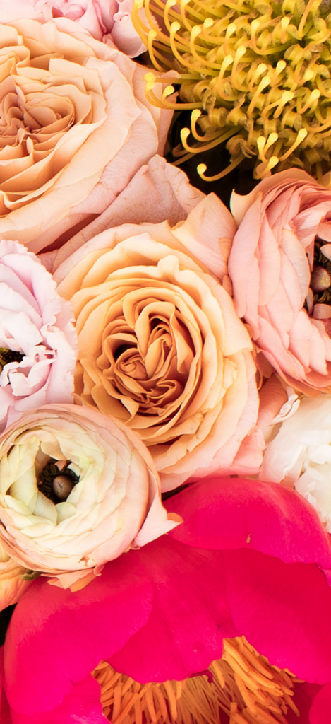 Beautiful floral phone wallpaper