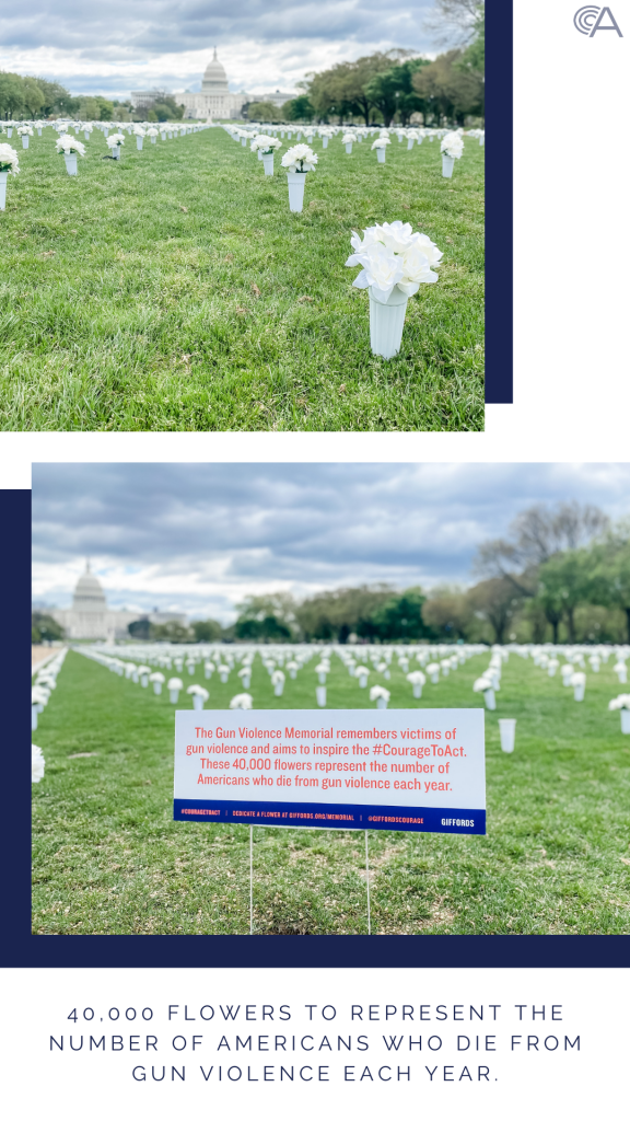 Giffords Gun Violence Memorial 40000 flowers on the Mall gun violence memorials in Wasington DC